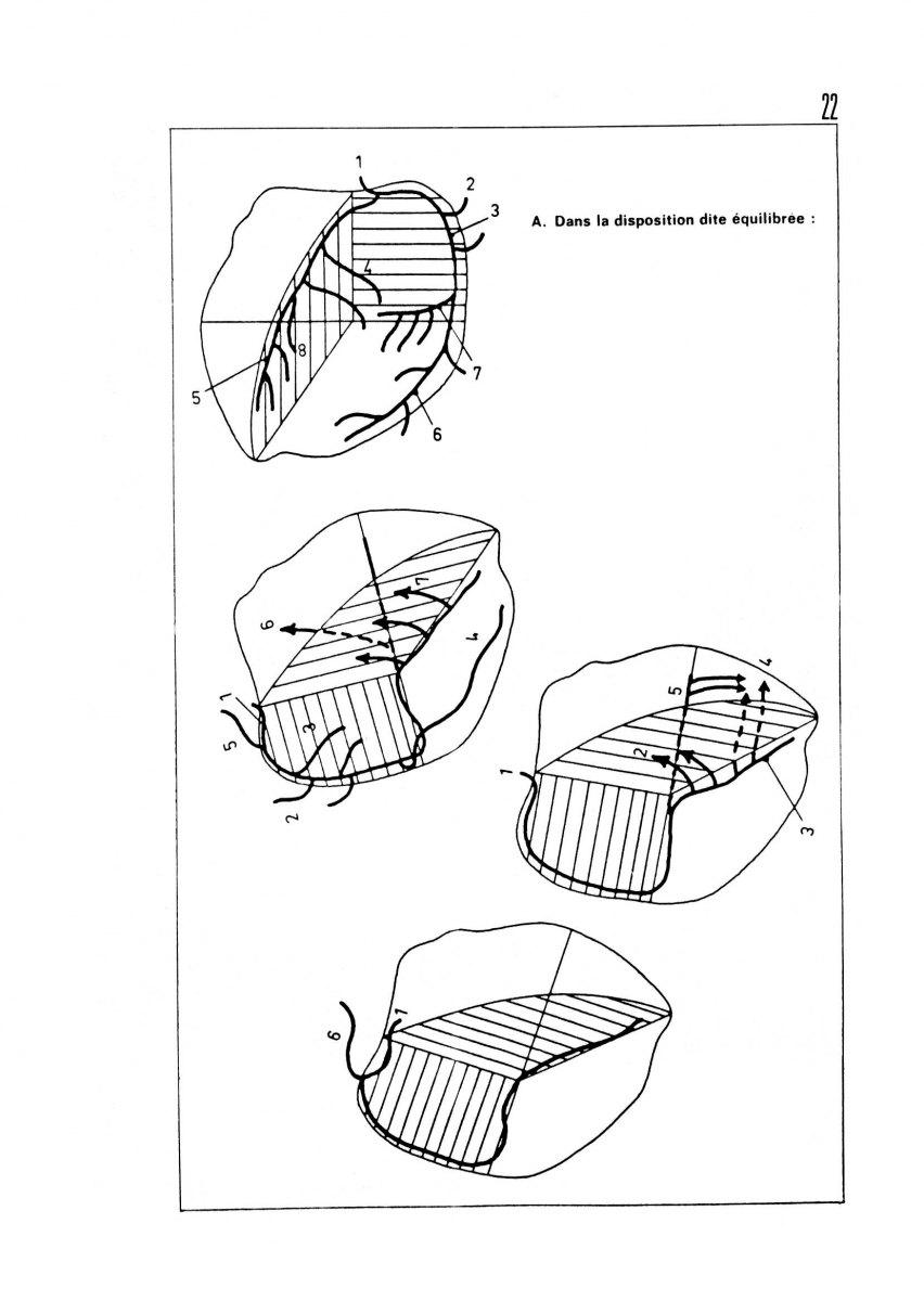page 0022 Y. Le Guen INDI-INRI Coeur et Plan