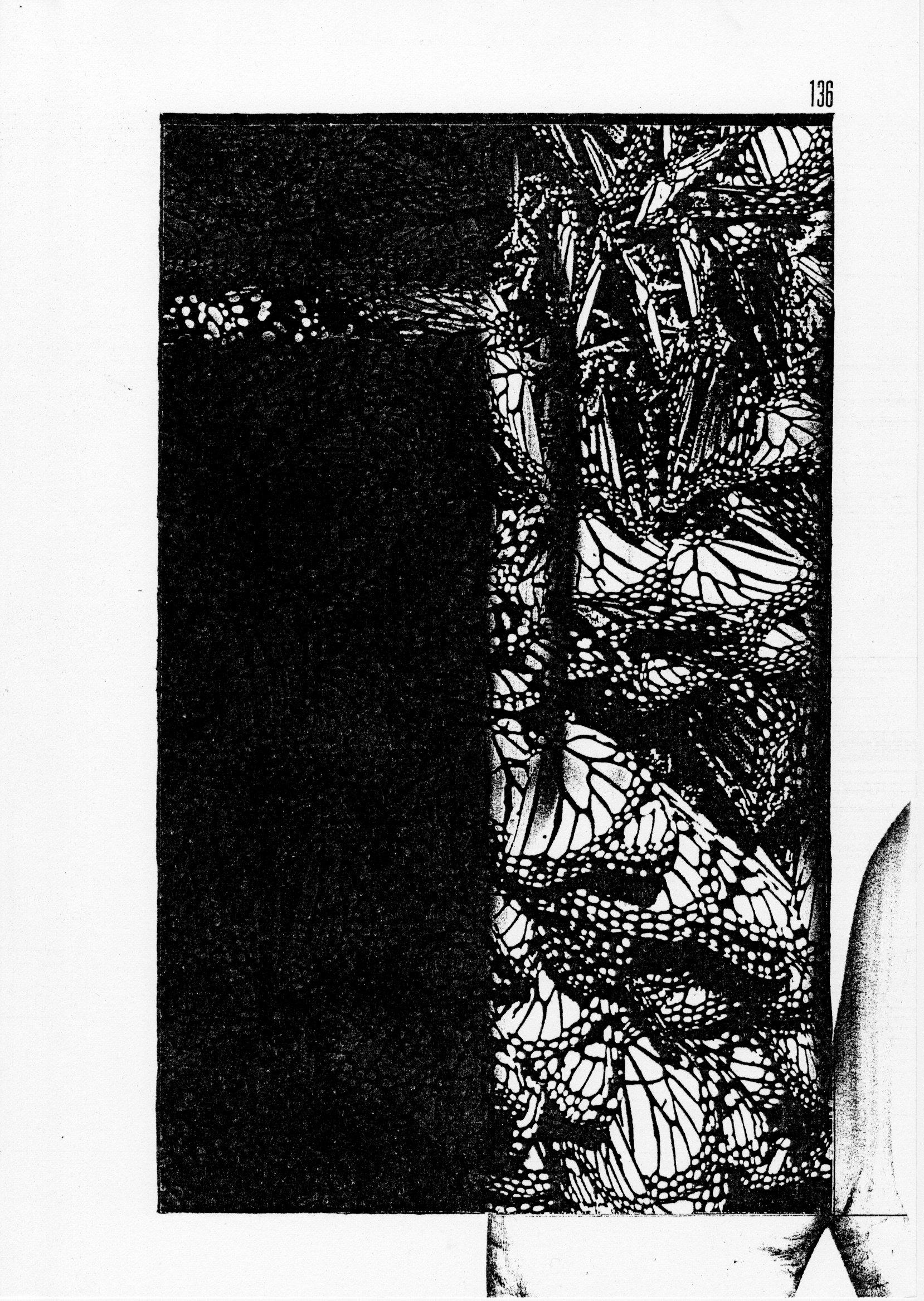 page 0136 S. Babert PILLONS PLIONS ( Série 1 )