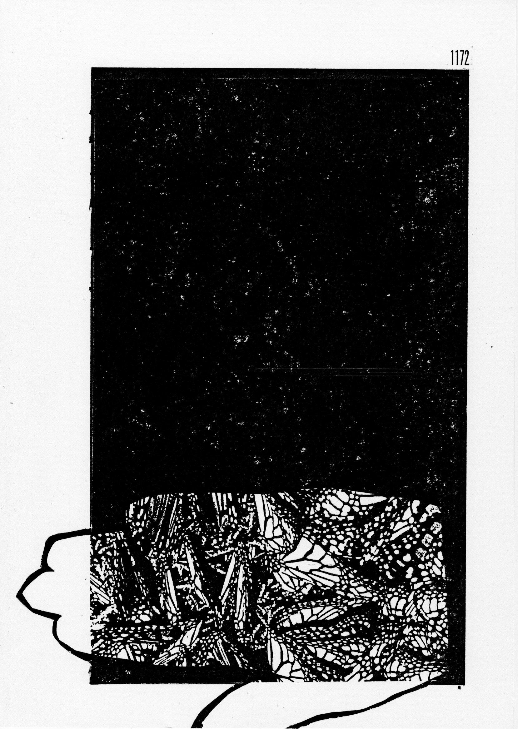 page 1172 S. Babert PILLONS PLIONS ( Série 2 )