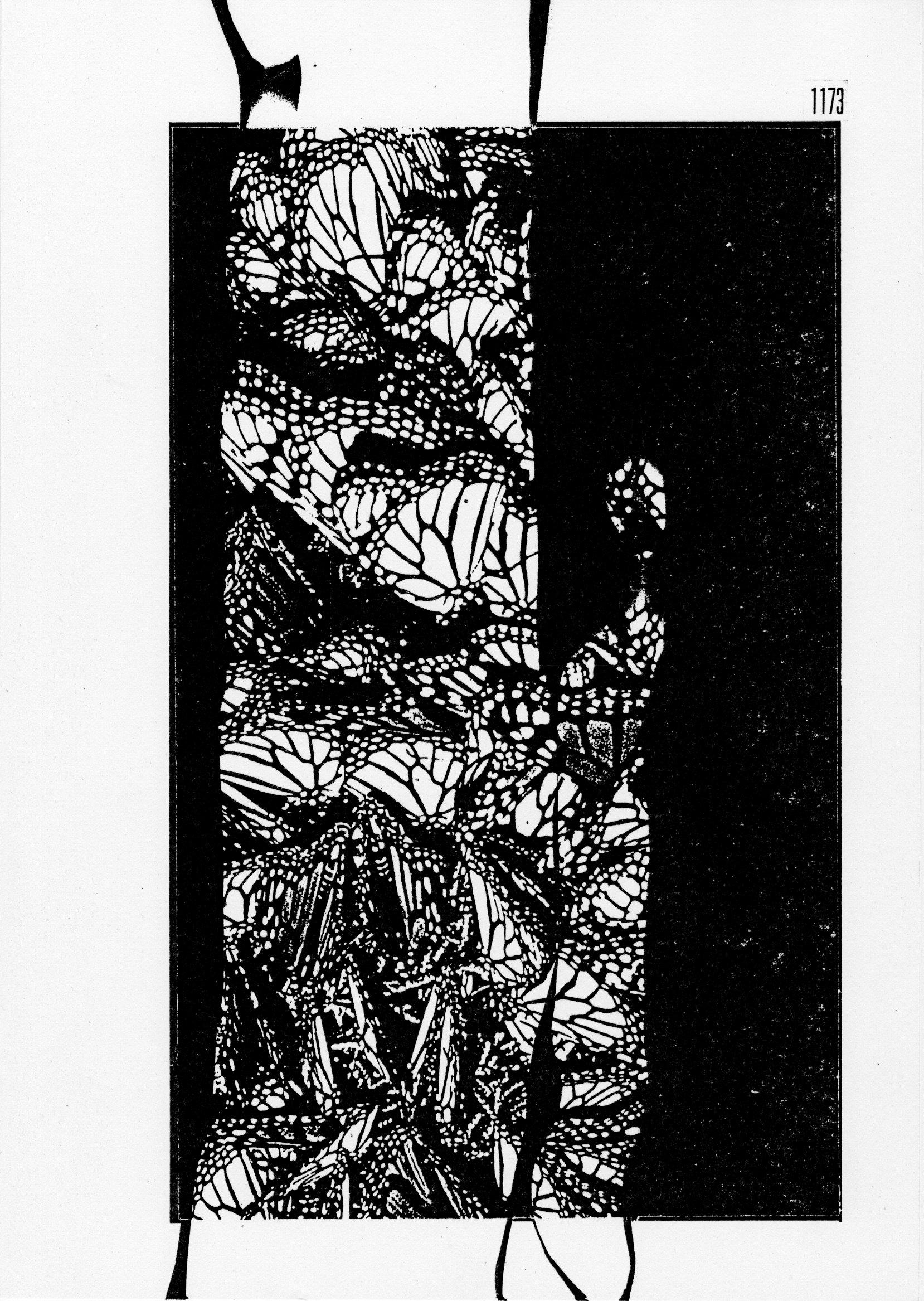 page 1173 S. Babert PILLONS PLIONS ( Série 2 )