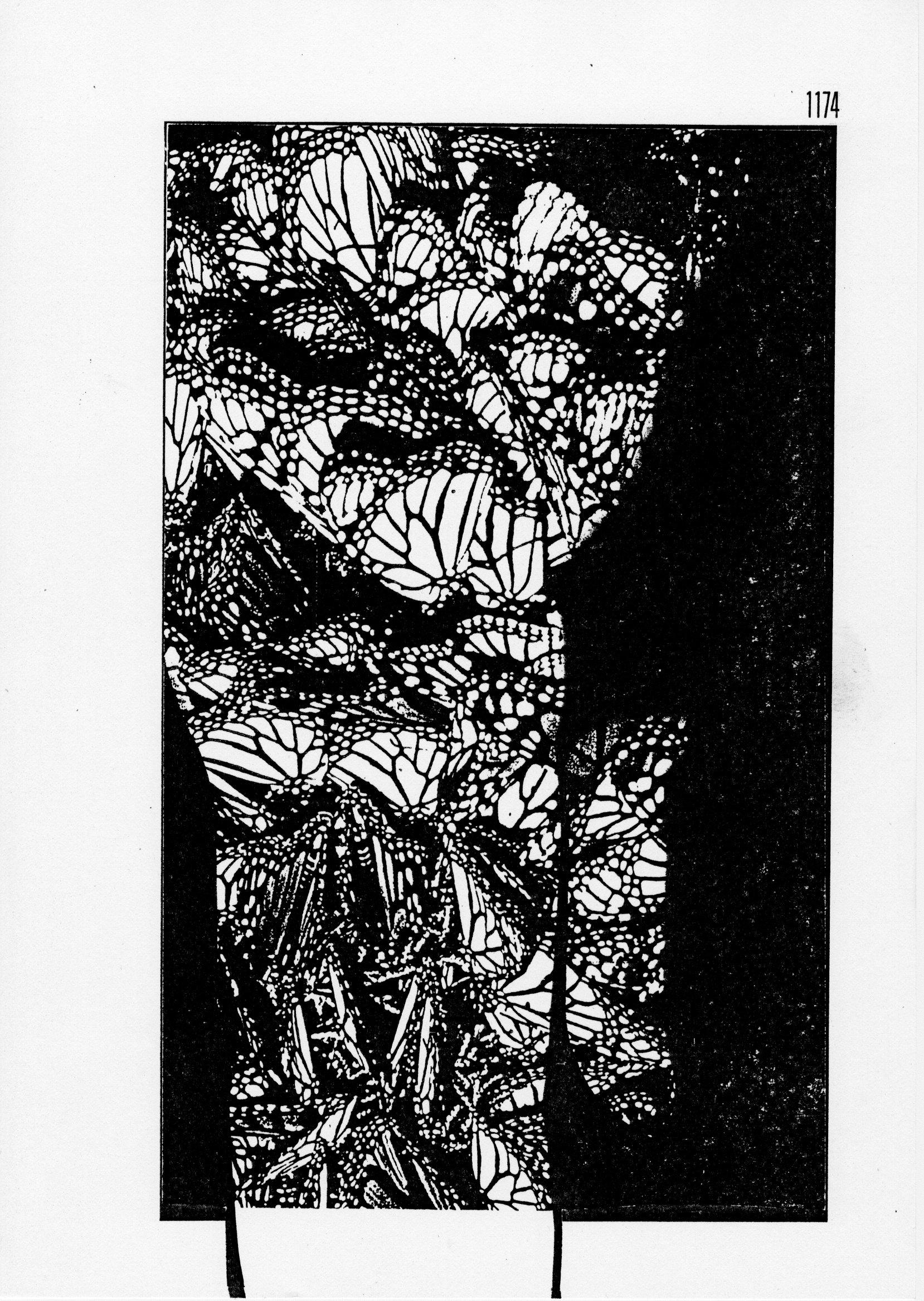 page 1174 S. Babert PILLONS PLIONS ( Série 2 )