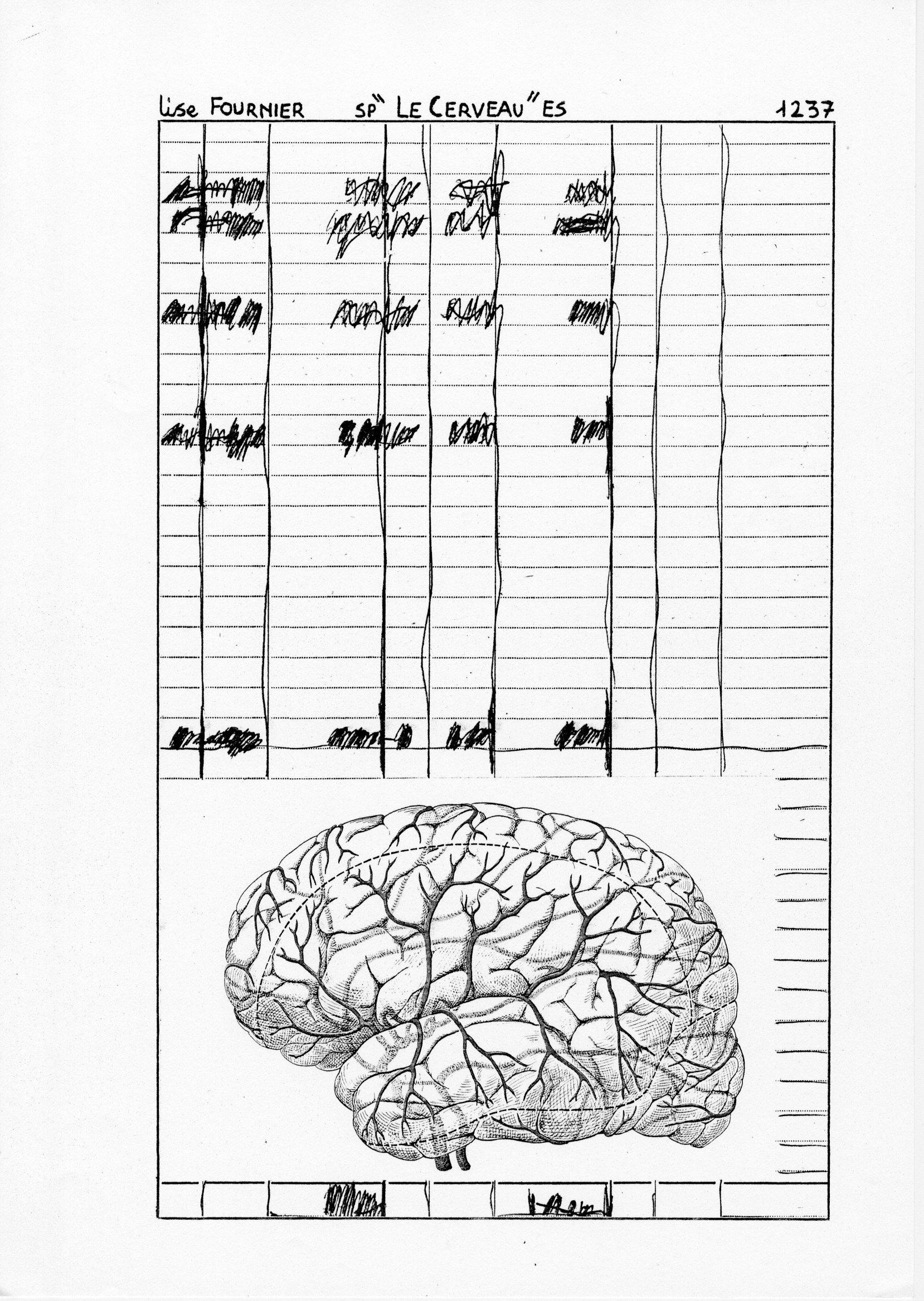 page 1237 L. Fournier SP -LE CERVEAU- ES