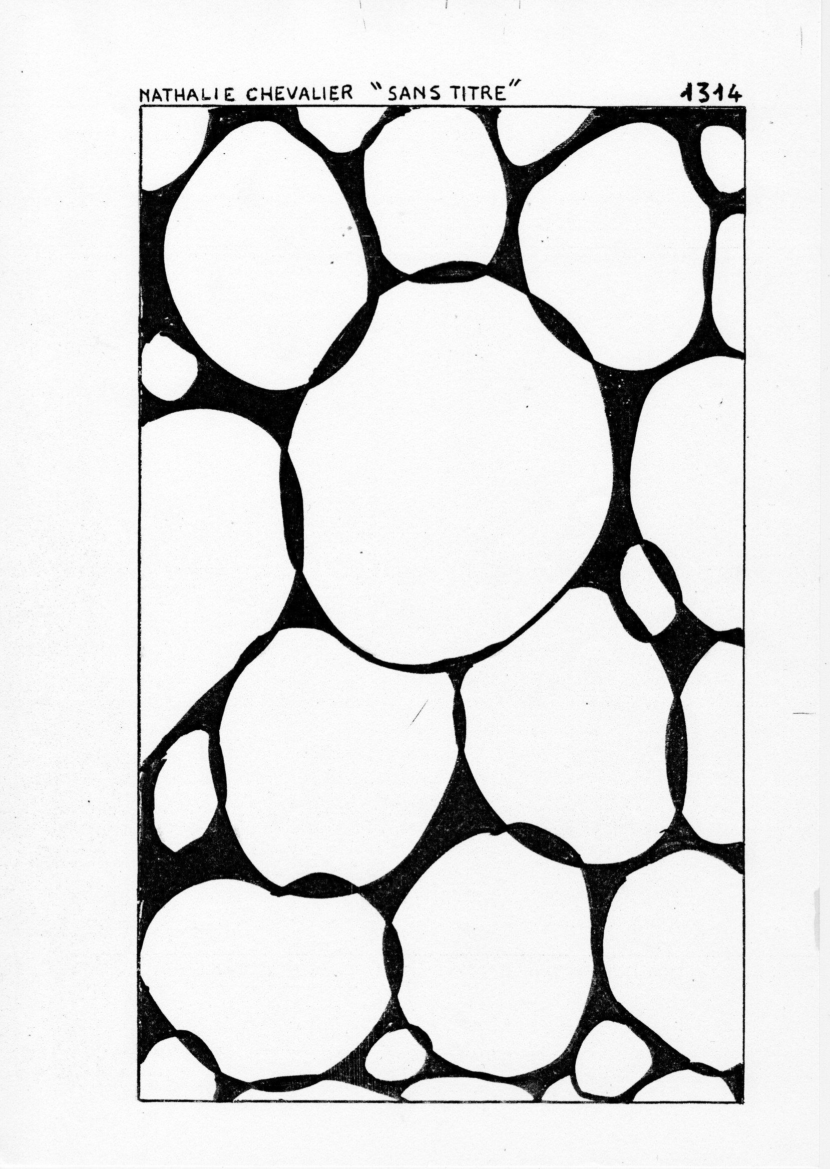 page 1314 N. Chevalier SANS TITRE