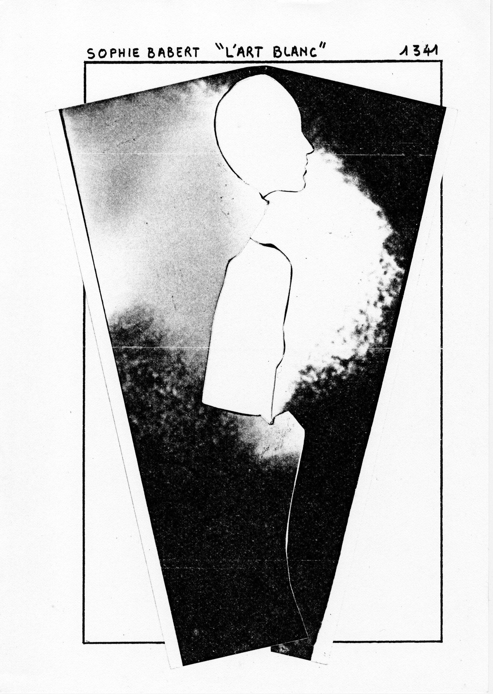 page 1341 S. Babert L'ART BLANC