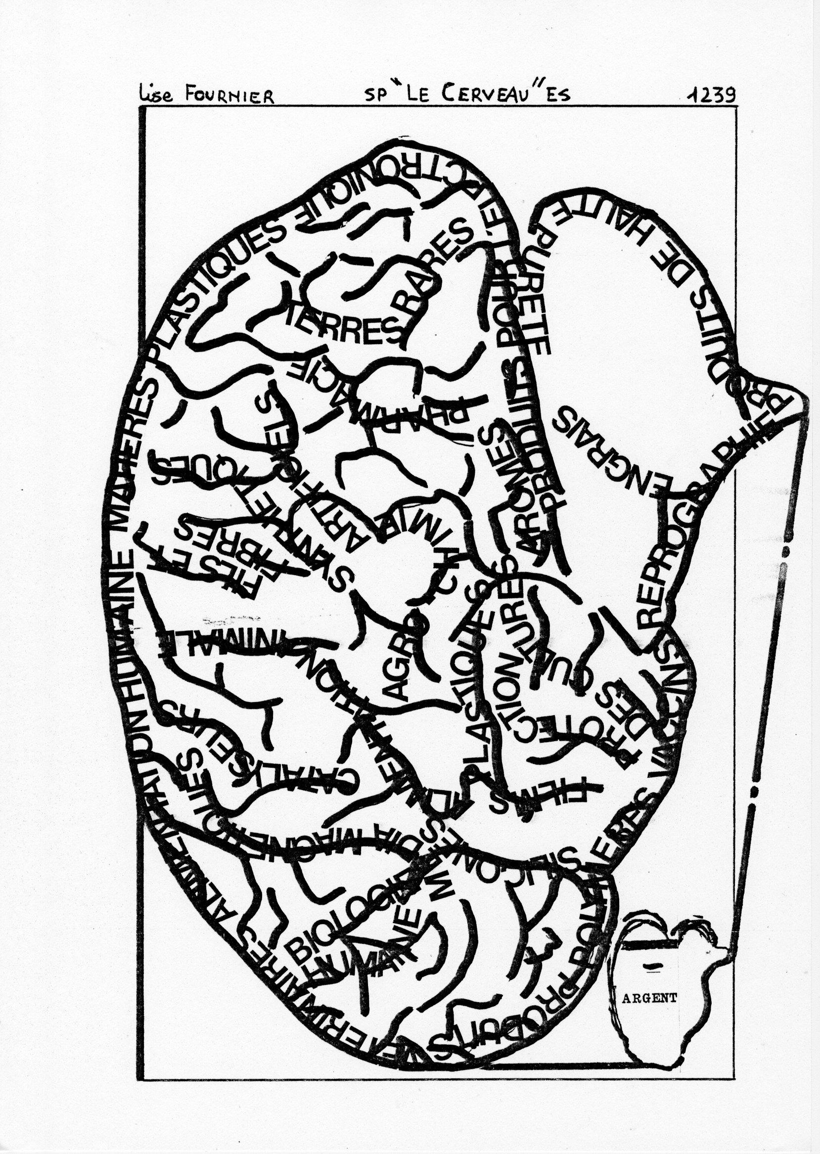 page 1239 L. Fournier SP -LE CERVEAU- ES